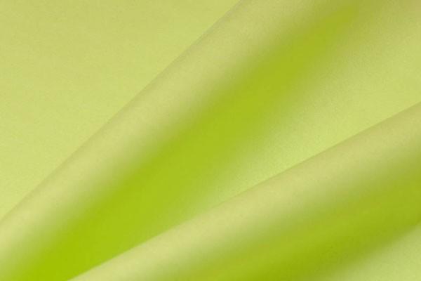 Seidenpapier - hellgrün