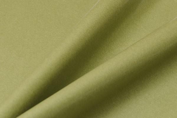 Seidenpapier - moos-grün